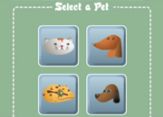Pets in the City, e-Learning 6